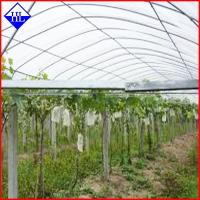China PP Spunbond Nonwoven Agriculture Crop Cover Cloth , Non Woven Weed Control Fabric wholesale