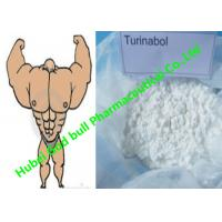 China Oral Turinabol powder anabolic androgen steroids Reduce SHBG muscle Cycle wholesale