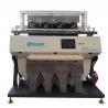 Carrot Vegetable Food Sorting Machine Of Multi Function 700 - 2500LM