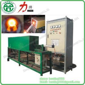 Start Company Hot Sale Induction Forging Machine