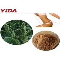 China Hoodia Gordonii Cactus Extract Weight Loss Steroids wholesale