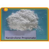 Wholesale 17-Propionate / Nandrolone Steroid Propionate Raw Steroid Powders CAS 7207-92-3 from china suppliers