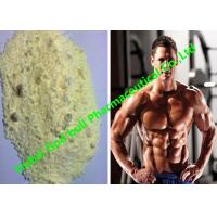 China Trenbolone Enanthate Raw Hormone Powders tren 100 Bulking and Cutting Phases wholesale