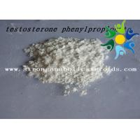 Quality Test Phenylpropionate 1255-49-8 Testosterone Anabolic Steroid Testosterone Phenylpropionate for sale