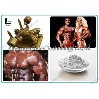 Fat Cutting Powders Testosterone Anabolic Steroid Testosterone Propionate