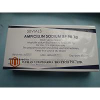 China Severe Infection Treatment Ampicillin Sodium Injection , Dry Powder Injection 0.5g / 1g wholesale