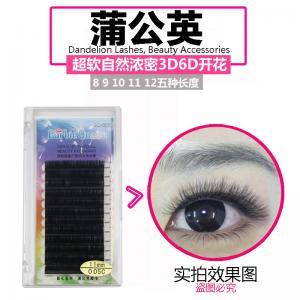 Alluring B Curl Eyelash Individual Extensions 13mm/14mm Sterilized PBT Material