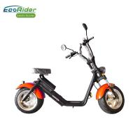 China EcoRider Fat Tire 2 Wheel Electric Bicycle , On Off Road Eletric Scooter With Remote wholesale