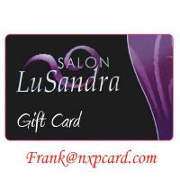 Cheap Free Sample Wholesale Printing Plastic Gift Cards wholesale