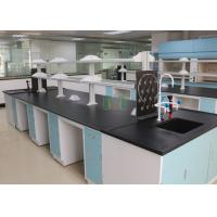 Steel Structure Modular Laboratory Furniture With Reagent Shelf And PP Sink