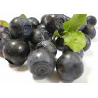 Skin Care Bilberry Fruit Powder , Organic Fruit And Vegetable Powders Trace Element