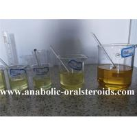 China Semi Finished Injectable Anabolic Steroids Testosterone Base Suspension Dosage 100mg wholesale