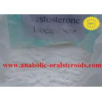 Pure Testosterone SteroidTestosterone Isocaproate Powder 15262-86-9 No Side Effect
