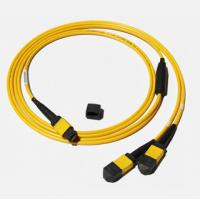 China MPO-MPO Low insertion loss,high speed network,Yellow/Aqua color  fiber optic patch cord wholesale