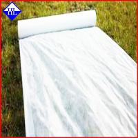 China 4% UV Resistant Agriculture Non Woven Fabric , Ground Cover Weed Control Fabric wholesale