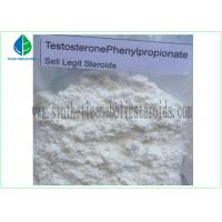 China 99% Purity Raw Hormone Powders Steroids Testosterone Phenylpropionate for Muscle Mass wholesale