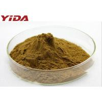 Quality Natural Pentaphyllum Tea Gynostemma Extract Powder 99% Anti Aging Anti Cancer for sale