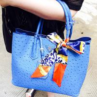 Cheap Famous Brand Women Bags Ostrich Handbags with Free Scarf (SY5695) wholesale
