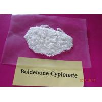 Injectable Boldenone Cypionate 106505 90 2 , Androgenic Anabolic Steroids Powder