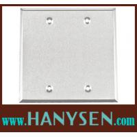 Cheap UL Double Gang Blank Weatherproof Junction Box cover Plate wholesale
