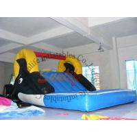 Cheap Custom Kids Outdoor Inflatable Pool Water Slide For Rental Business wholesale