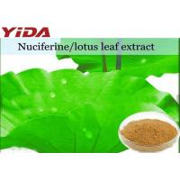 China Lotus Extract Nuciferine Weight Losing Raw Materials Root / Leaf / Seeds wholesale