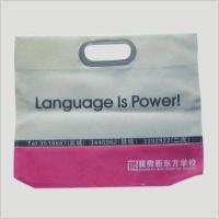 China 3007 Non-woven Bag wholesale