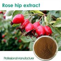 China High quality Vitamin C 500mg with Rose Hips chewable wholesale