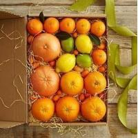 China Simply Fresh Winter Citrus NO.2 shenzhen gift hamper delivery wholesale