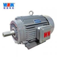 Wannan Motor _YE3 series of ultra-efficient three-phase asynchronous motors