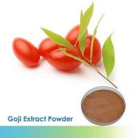 China 100%Natural Wolfberry extract food additives wholesale