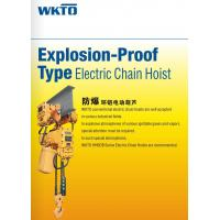 Explosion-Proof Hoist Explosion-Proof Electric Chain Hoist