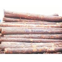 Cheap >>wood wholesale