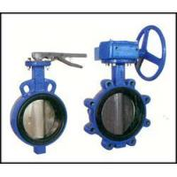 China Bi-axial butterfly valve witho wholesale