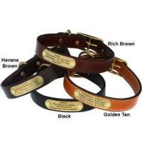 China English Bridle Leather Dog Collar with Personalized Nameplate wholesale