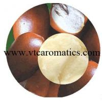 China Shea Butter Oil wholesale