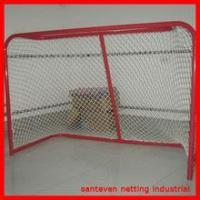 standard hockey goal,ice hockey goal
