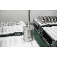 Stainless Steel Slotted weights