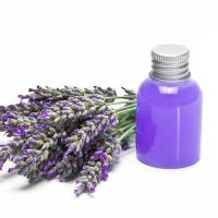 China Lavender oil wholesale