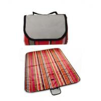 China Outdoor Items Portable Waterproof Picnic Blanket/Mat-ADFD8155 wholesale