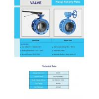 Flange Butterfly Valve ( Worm )